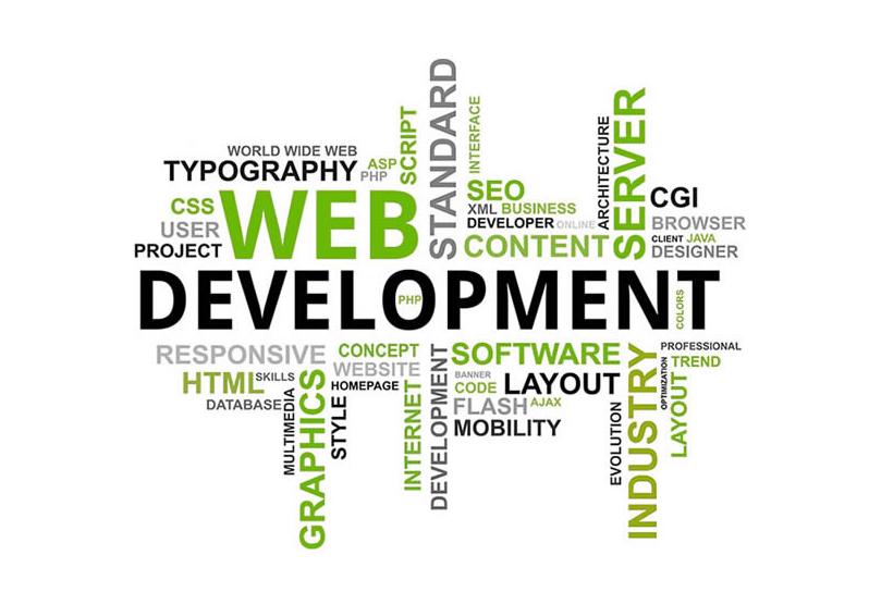 WEB DEVELOPMENT DALLAS
